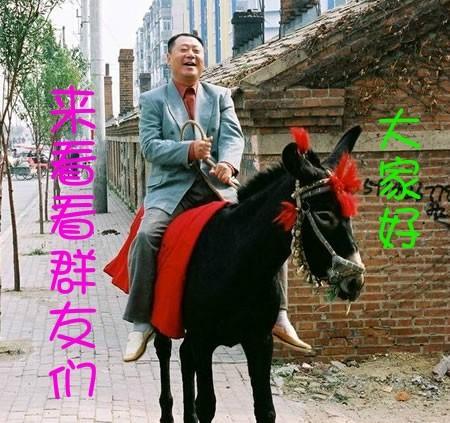 大家好,俺骑驴来看你们了表情图片
