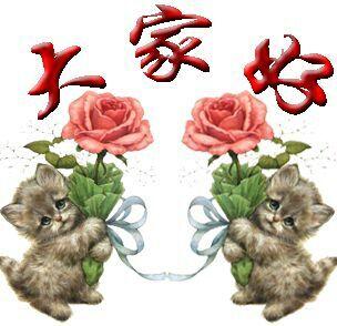 两只可爱的猫向大家问候,大家好表情图片