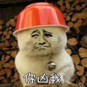 委屈的猫咪:你凶我表情图片