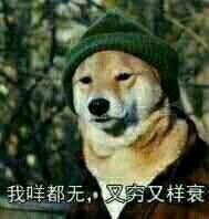 我都穷又咁样衰表情包 而你靓仔到嗨甘粤语表情包表情图片