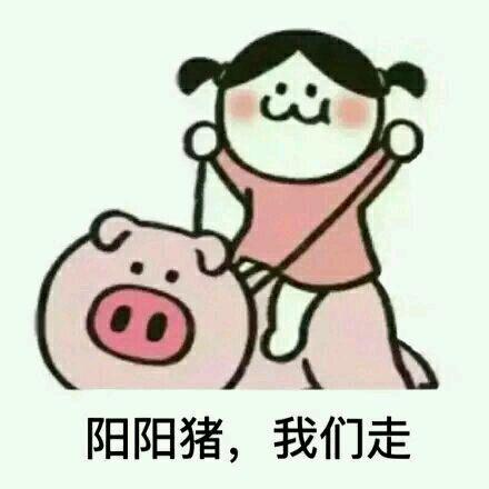 阳阳猪,我们走表情图片