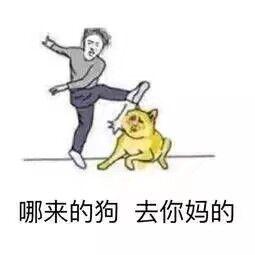 搞笑表情包:哪来的狗,去你妈的!(哎哟我去 一脚踢空了)表情图片